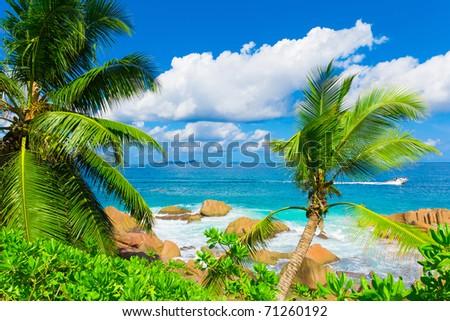 Tranquility Palms Bay - stock photo