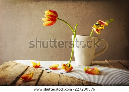 Transience: Still life with tulips in a cup - stock photo