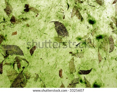 Translucent handmade paper with organic green surface - stock photo