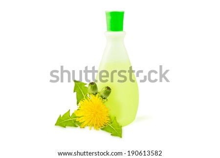 translucent vial, yellow dandelions with green leaves and buds on a white background - stock photo