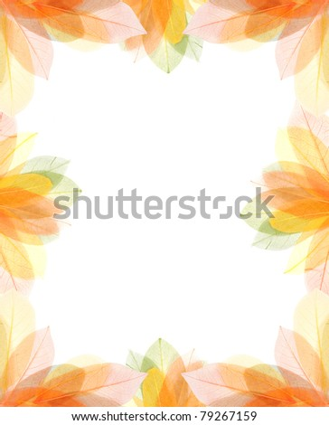 transparent autum leaves frame isolated on white - stock photo