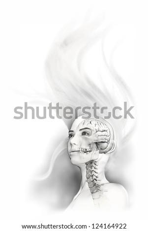 Transparent Female Head - stock photo