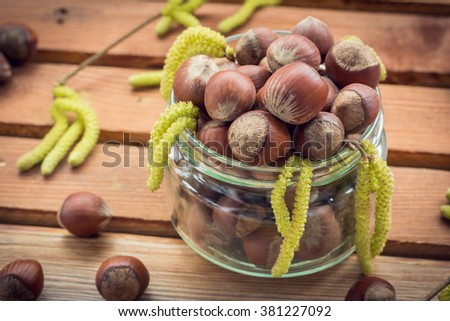 Transparent glass jar with ripe hazelnuts and catkins of hazel