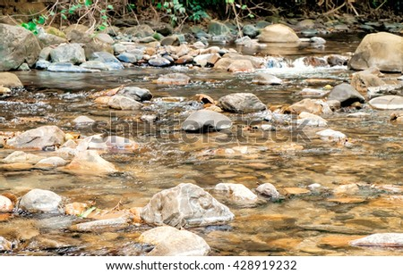 Transparent water in river with yellow stone, Khao Sok National Park, Surat Thani Province, Thailand. Selective Focus on the rocks in the foreground. - stock photo