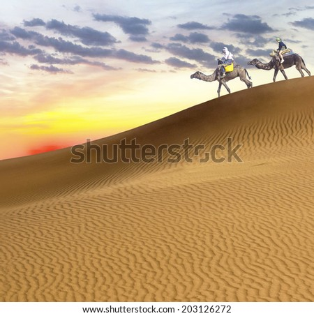 Travel with camel - stock photo
