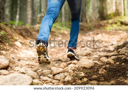 Traveler on footpath in the forest