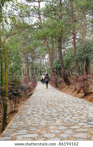 Traveler walking through paved road to Yellow mountain (Huangshan) - stock photo