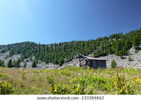 Tray of sagnes, massif of the lignin, the Alps of high Provence, France - stock photo