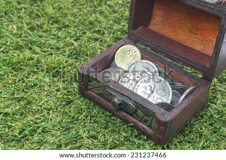 Treasure chest with coins and green grass - stock photo