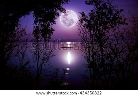 Tree against sky on tranquil lake. Silhouettes of woods and bright full moon would make a nice picture. Beauty of nature use as background. The moon taken with my own camera, no NASA images used. - stock photo