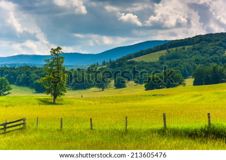 Tree and fence in a field and hills in the rural Potomac Highlands of West Virginia. - stock photo
