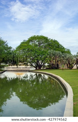 Tree and greensward in garden .This place is Suan Luang Rama 9 of the largest public park in Bangkok,Thailand.