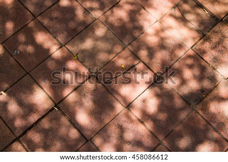 Tree and leaves shadow on dirty walk way