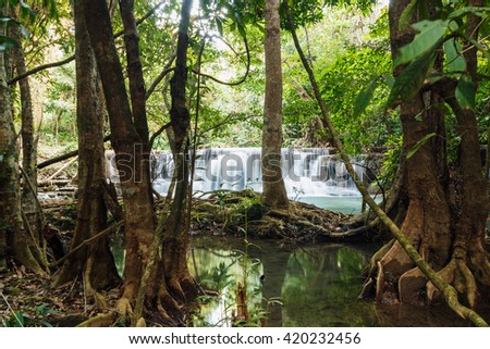 Tree and Waterfall Huay Mae Kamin in forest of thailand