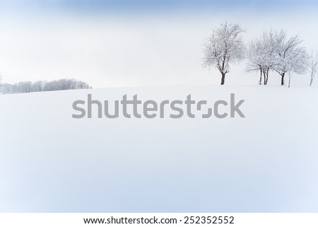 tree and winter landscape - stock photo