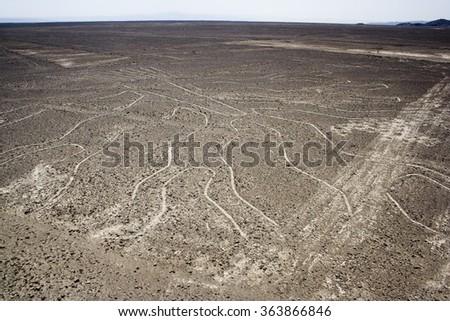 Tree (Arbol), Nazca Lines, Aerial View, Peru - stock photo