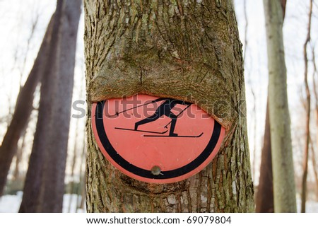 tree bark growing over a cross country skiing sign - stock photo