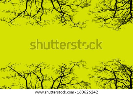 tree branches border a yellow background