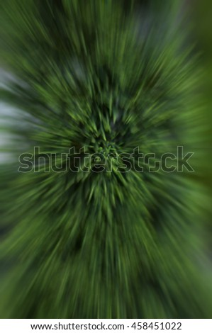 Tree branches without leaves are glossy black side . Abstract blur zoom. - stock photo