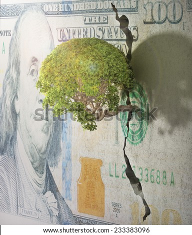 Tree breaks free. Good concept for freedom and success concept. Tree in wall of dollar. - stock photo