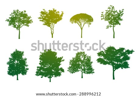 Tree Color Silhouette - stock photo