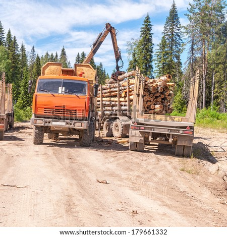 Tree crop harvester stands on dirty road and stows logs in timber lorry. Arkhangelsky region, Russia.