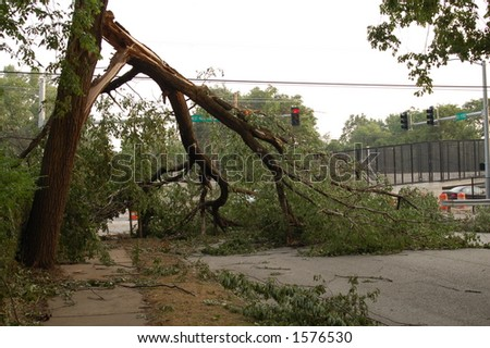 Tree Down Across an Intersection, St. Louis, Missouri - stock photo