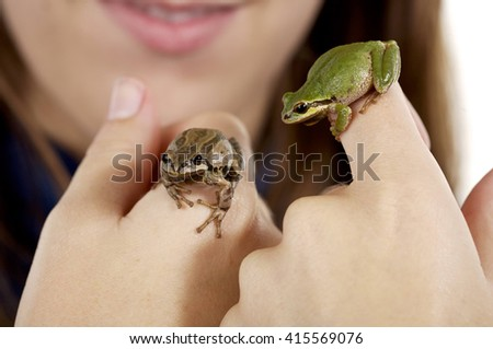 Tree frogs, one brown and one green