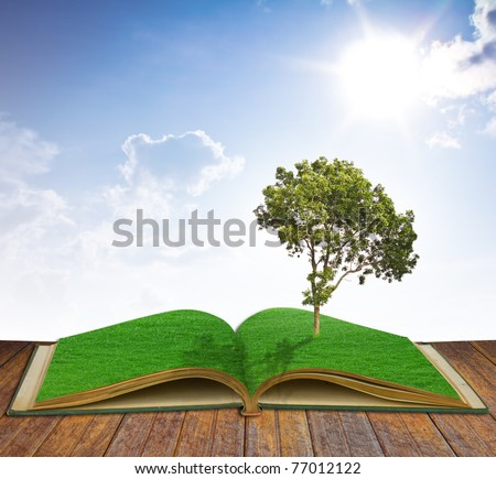 Tree growing from a book - stock photo