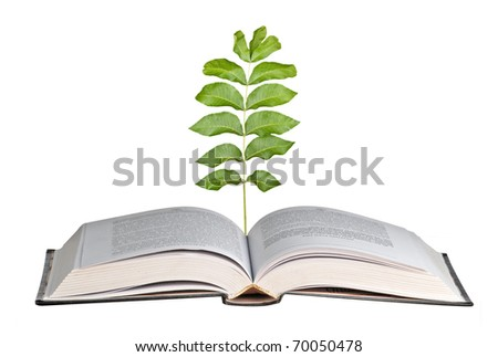 Tree growing from books