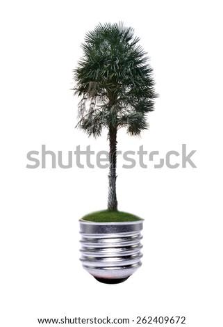 tree growing inside the light bulb - stock photo