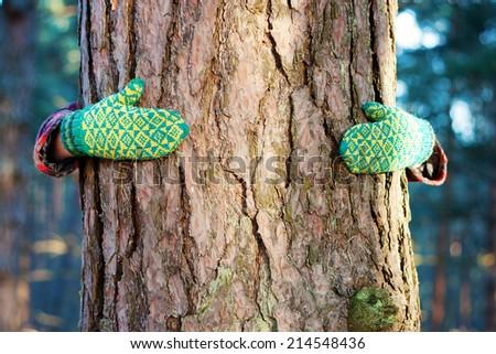 tree hug, save tree concept - stock photo