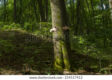 Tree hugging. Close-up of hands hugging tree - stock photo