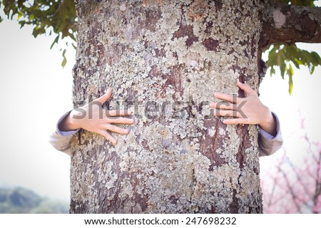 Tree hugging. Close-up of hands hugging tree. Protect - love ecology concept. - stock photo