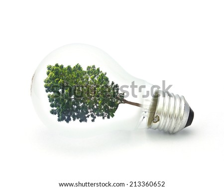 tree in a lightbulb, green energy concept - stock photo