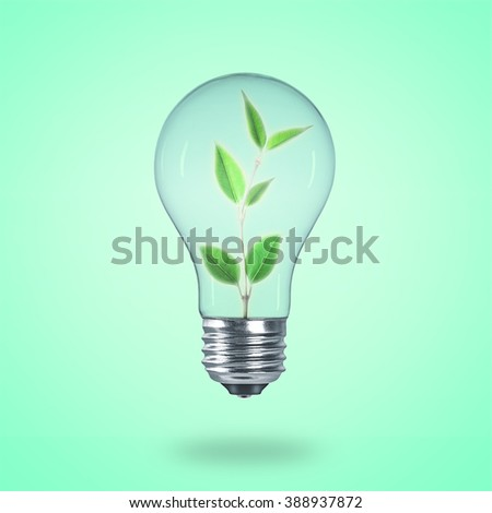 Tree in bulb. Green leaf concept. Ecological.