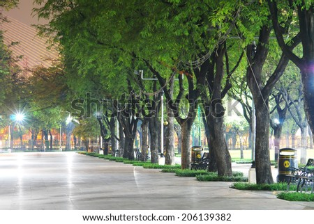 tree in city park  - stock photo