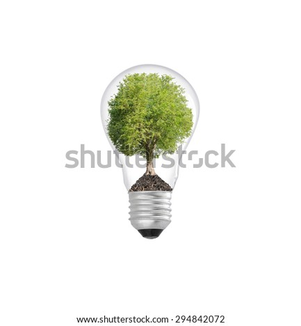 Tree in lightbulb , concept design
