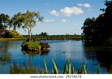 Tree in middle of pond, Hunterville, New Zealand - stock photo