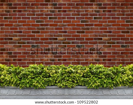 Tree in pot with brick wall background - stock photo