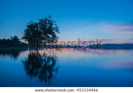 Tree in the lake light evening twilight, Colorful landscape