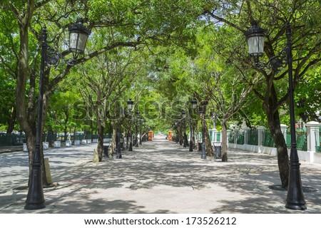 Tree lined avenue Paseo de la Princesa in San Juan, Puerto Rico - stock photo