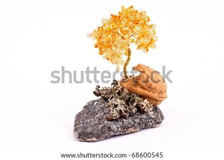 Tree of happiness growing out of walnut isolated on white background