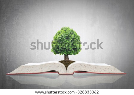 Tree of knowledge growing on soil on big archive open textbook grey cement backdrop background: Educational tree growth conceptual CSR ESG idea: Go green thinking imagination from book reading concept - stock photo