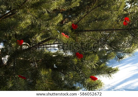 Tree of love , firtree with growing hearts decorations