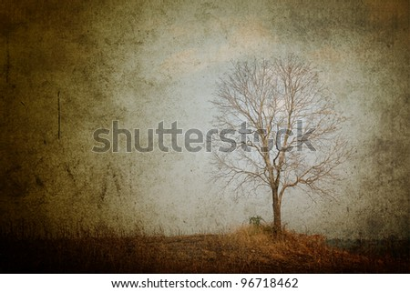 Tree on the hill. - stock photo