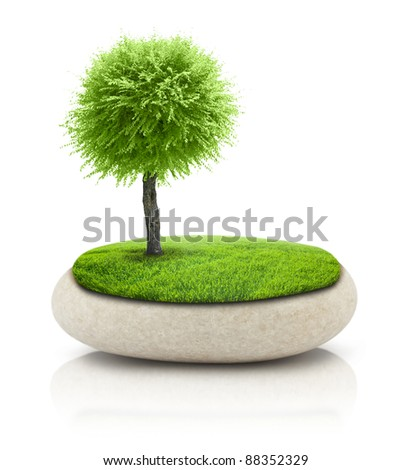 Tree on the rock on white (abstraction) - stock photo
