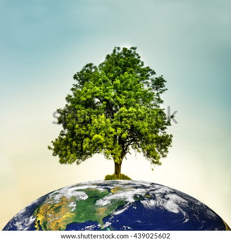Tree on top of the world. Save the environment. Globe image courtesy of NASA - Visible Earth - stock photo