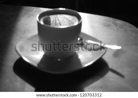 Tree reflection in a white cup of tea on a table. Black and white photo.