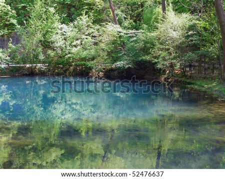 Tree reflection in water - stock photo
